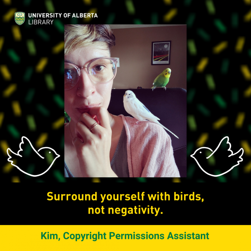UAlberta Copyright Permissions Assistant Kim with her two budgies.