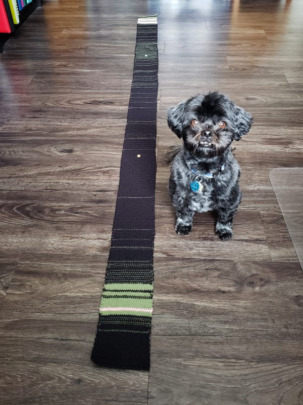 A long black and green striped swatch next to a small dog on a wooden floor.